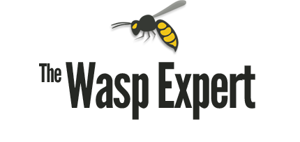 The Wasp Expert, LLC | Serving Southeastern Pennsylvania